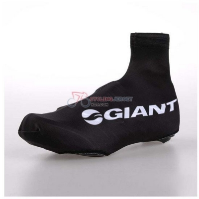 Glant Shoes Coverso 2014