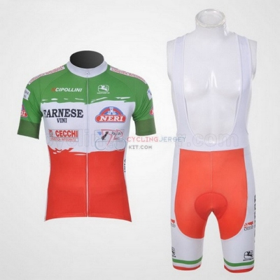 Giordana Cycling Jersey Kit Short Sleeve 2011 Green And Red